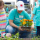 Here comes the Sun…Youth Community Garden
