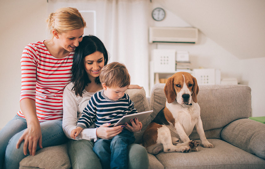 Photo of family, two women, dog and cute little boy, are sitting on the sofa in their living room and using tablet